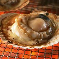 青木鮮魚店 - 北海道産・天然のホタテ!殻の上で焼く浜焼きスタイルが美味い!!