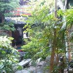 大野町きょう屋 - 良い感じの中庭