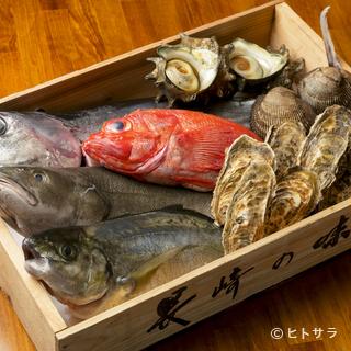その日に仕入れた魚介をその日のうちに。新鮮な海の幸に舌鼓