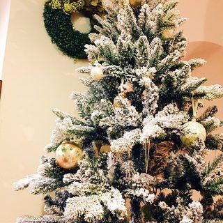 23、25日間限定のクリスマスコースご予約受付中です!
