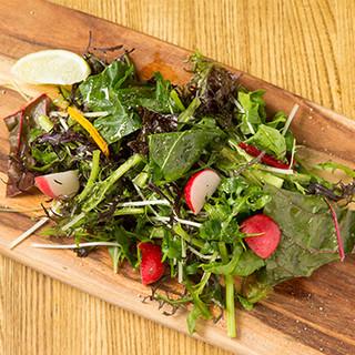 オーガニック無農薬野菜を使用◎体にやさしいフードも充実。