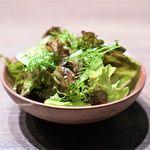 USHIGORO S - チョレギサラダ
