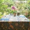 ガーデンレストラン 花さんご - 内観写真:庭が見える席
