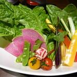 薩摩 牛の蔵 - 彩り野菜10種盛り