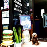 マグズカフェ - 第一日曜日に出勤のマグ店長(入口で呼び込みをすることも)