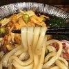 嵯峨谷 - 料理写真:うどんはこんな感じ