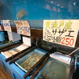 活‼︎魚介類
