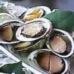 レストラン つばき - 貝定食