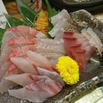 魚のてっぺん -