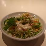 Green Garden Masala - キャベツ、紫キャベツ、水菜、ニンジンのサラダ