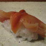 初音 - 赤貝