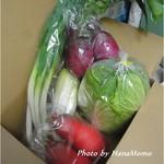 ディチョット - お買い上げの新鮮な野菜達です