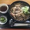 Sobadokoroebisu - 料理写真:冷たい肉そば