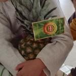 銀座千疋屋 - フィリピン産のパイナップル