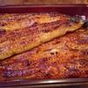 鰻重 - 料理写真:◎鰻重 2,880円