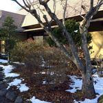 そば亭山彼方 - うっすら雪景色