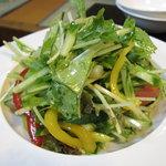 玄海 - 野菜サラダ(580円) 09.09.09.