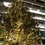 パークハイアット東京 デリカテッセン - アトリウムのクリスマスツリー