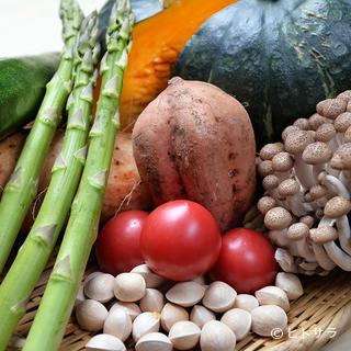 季節の野菜は旨みが違う。新鮮な国産食材を厳選仕入れ