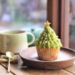 森森舎 - クリスマスツリーマフィン、チャイ