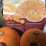 JA香川県夢ハウス協栄 - 料理写真: