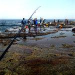 7828866 - 磯場ではホッケ釣り師が・・・