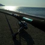 7828868 - 江の島サーフ