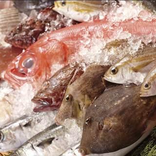 漁港直送鮮魚なので魚盛の魚は鮮度が違います!
