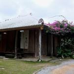 今帰仁そば - フクギに囲まれた小さな古民家。