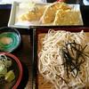 竹泉 - 料理写真:粗挽き天ざるそば 並(1200円)