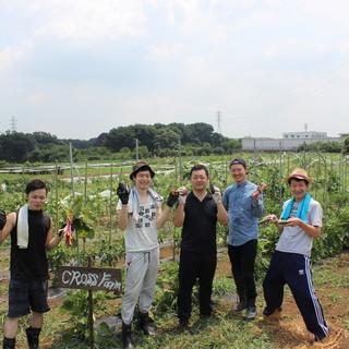 【旬産旬消】自社農園クロスファームから完全無農薬野菜が届く!