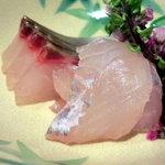 和の食 いがらし - シマアジとマコガレイのお造り