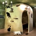てまりのおうち - 寂しい猫の階段