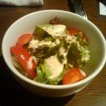Pollo - サラダ