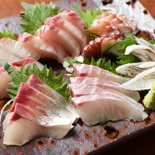 【地産池消】瀬戸内を味わう鮮魚が入荷しております!