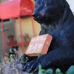 cafe 熊の手 - くまさんがお出迎えしてくれます