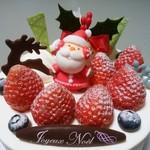 78485526 - クリスマスケーキ、ちょっとアップで