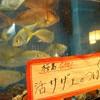 漁師茶屋 桜島 - その他写真:
