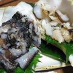 78549637 - しゃこ貝の刺身