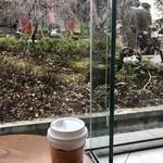スターバックス・コーヒー - 狸を見ながら♪