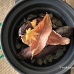 スミヨシヤ - 料理写真:お鍋と葉っぱは撮影小物です