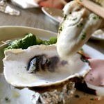 バルカ - 鳥羽 桃こまち生牡蠣