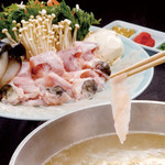 音音 - 天然河豚のてっちり鍋