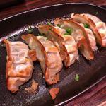 ぴかり魚 - 鉄板焼餃子