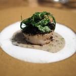 デュ バリー - ホタテ貝の黒トリュフ付け焼き 菊芋のブルーテ