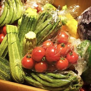 契約農家直送の新鮮野菜