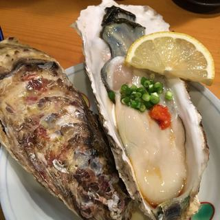 秋葉原旨い魚と焼酎.地酒 美味研鑽 TETSU - 生牡蠣