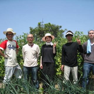自家農園・二上山麓より元気野菜とお米が自慢です。