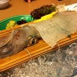 浜乙女 - 料理写真:食べたかったイカ活き作りを注文。 値段はその日によって変動するそうです。