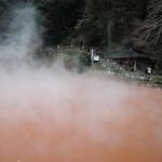 お食事処 極楽亭 - 「血の池地獄」に行ってみた。 その名の通り、赤い泥が沈んだ温泉。